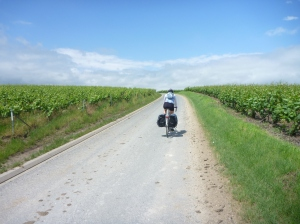 Cycling through Champagne region